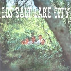 Salt Lake City - Los Salt Lake City N-27.006