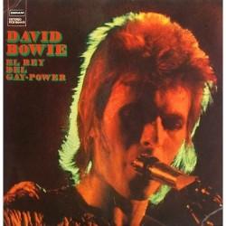 David Bowie - El Rey del Gay-Power DCS 15044/5