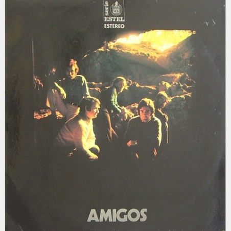 Amigos - Amigos HHS 11-224