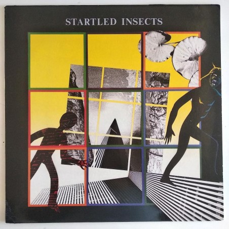 Startled Insects - Startled Insects AN10A ML 1