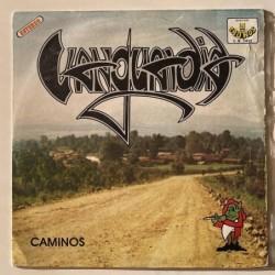 Vanguardia  - Caminos C.R. 1412