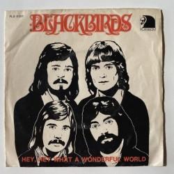 Blackbirds - Hey