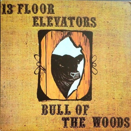 13th Floor Elevators - Bull of the woods IA-LP 9