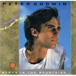 Godwin - Baby's in the mountains (New York Remix) 815 536-1