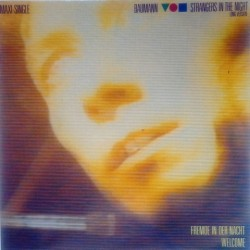 Baumann - Strangers In The Night 601 125-213