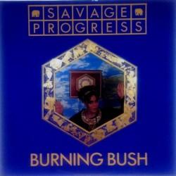 Savage progress - Burning Bush TEN 27/12
