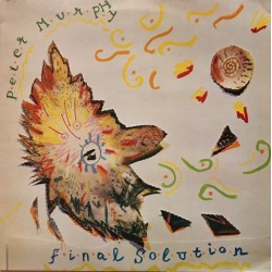Peter Murphy - Final Solution BEG 143T